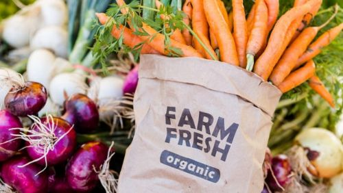 Global Organic Food Market Expansion Continues